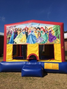 15ft Princess Bounce