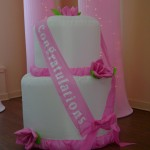 Inflatable Cake Decoration Rental $5