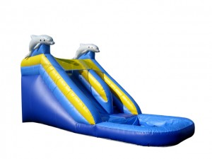 15ft Dolphin Plunge Waterslide