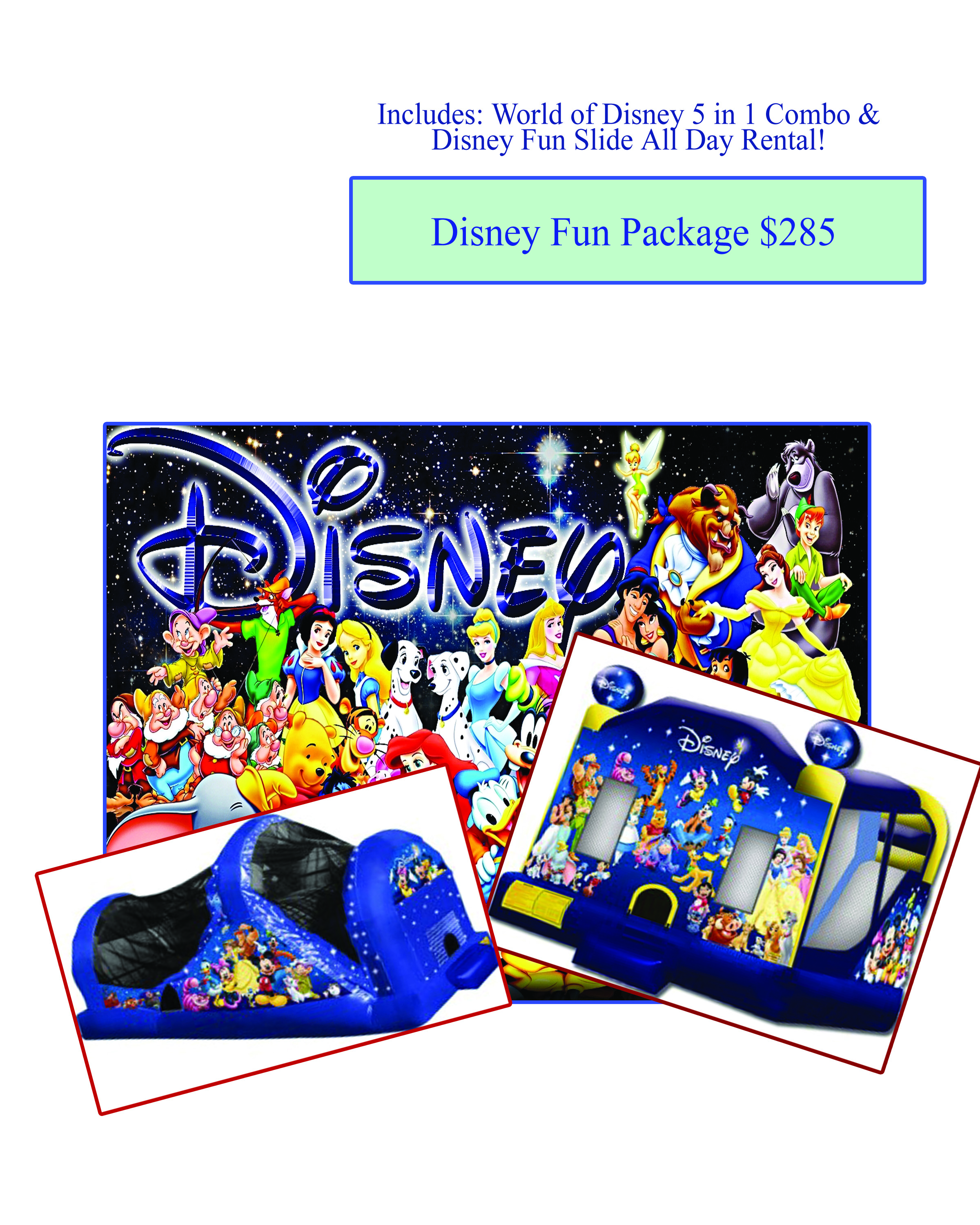 Disney Fun Package 285  Sunshines Party Rentals