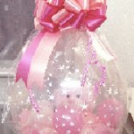 Stuffed Balloons $25 & up