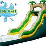 18' Palm Waterslide $220