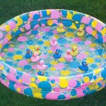 Inflatable Small Duck Pond Rental $10